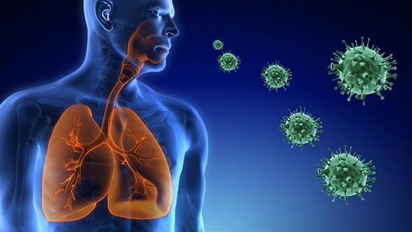 Respiratory Syncytial Virus (RSV) Diagnostics Market Overview by Size, Value, Mega Trends, Global Players as Abbott, Roche, BD, Thermo Fisher, Luminex, Danaher, Biocartis, Hologic, BioMerieux, etc | Outlook to 2026 - WMR